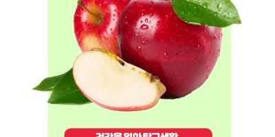 팔방미인 사과백과