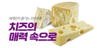세계인이 즐기는 건강식품, 치즈 백과 사전