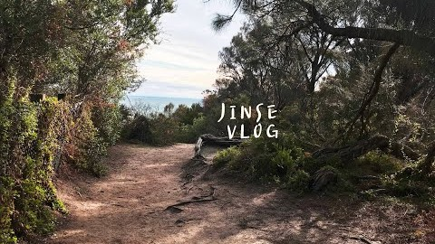 JINSE 진세 | 호주 멜번 일상브이로그, 멜버른 브이로그, 동네 산책하고 장보기