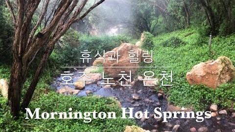 몸과 마음을 디톡스 시켜주는 '멜번의 노천온천' | 멜번에도 노천온천이 있다구? | 자연의 선물, 미네랄이 풍부한 천연온천수 | Mornington Hot Springs
