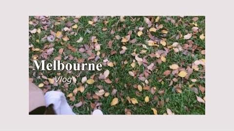 [Vlog] 호주로 교환학생 :) / 멜버른 일상( Brunswick , 호주 빈티지샵, 나홀로 피크닉, 에어팟 언박싱 , 드디어 한식 )