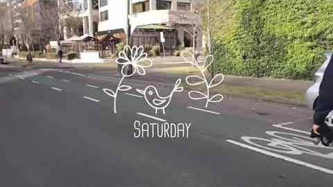 멜번 | vlog | 토요일 동네 산책 - albert park