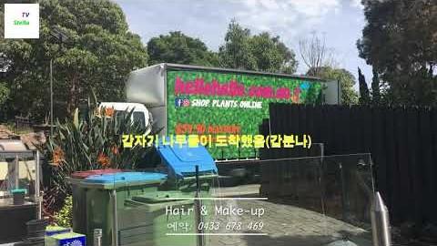 멜번 동쪽 동네 한국 미용실
