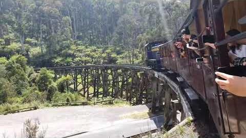 호주 멜버른여행 퍼핑빌리에서 증기기관차 타기