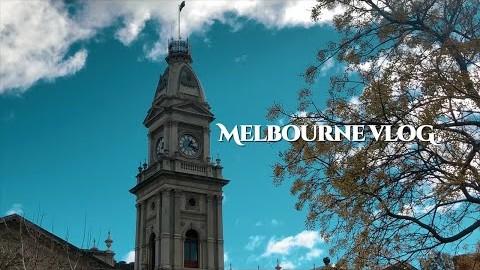 멜버른 브이로그 | 콜링우트 카페, 시티 카페, 멜버른 최애 카페 추천, 피츠로이 도서관