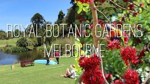 [Hyeonjin TV] 호주 멜번 보태닉 가든의 구석구석 살펴보기! 호주 여행 워홀 브이로그ㅣRoyal Botanic Gardens Melbourne Vlog