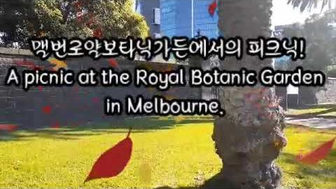 멜번로얄보타닉가든에서의 피크닉과 반정부시위 A picnic in the Melbourne Royal Botanic Garden and the demonstration.