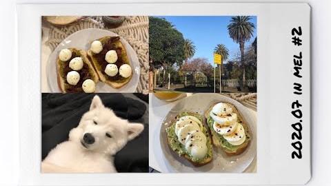 #9 멜버른 확찐자의 새로운 일상_Vlog
