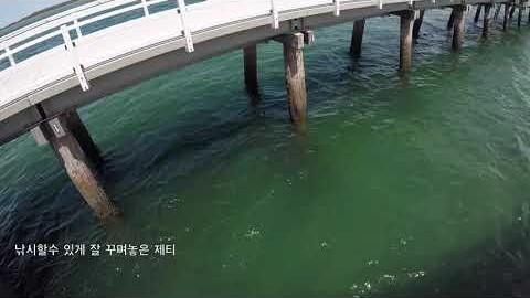 호주 멜번 포트 웰쉬풀 가장 긴 제티에서 수영과 낚시를 해보았습니다.