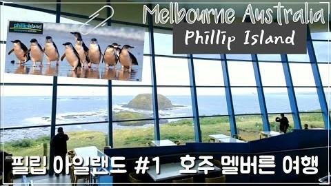 호주 멜버른 여행 필립 아일랜드 #1 Phillip Island Melbourne vlog #여행가이드 #맛집