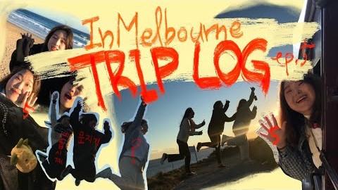 그때 그 멜버른::퍼핑투어 하는 날, 숲속에서 눈물의 샌드위치/ trip log