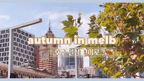 호주일상 | 가을로 물든 질롱 & 멜번 Autumn colours of Geelong & Melbourne