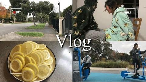 호주멜번브이로그|락다운 완화 후 아침산책하기, 레몬청 담그기, 갑분 허벅지씨름?!