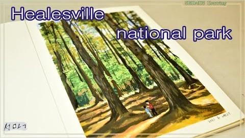 Healesville national park in Melbourne/멜번 힐스빌 국립공원을 소개해요.