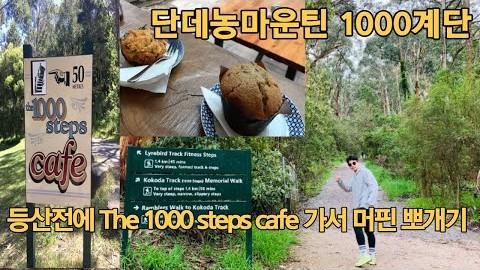 [호주일상-VLOG]   멜버른 등산 핫플 1000계단   The 1000 Steps Cafe   단데농 마운틴   주말 나들이  