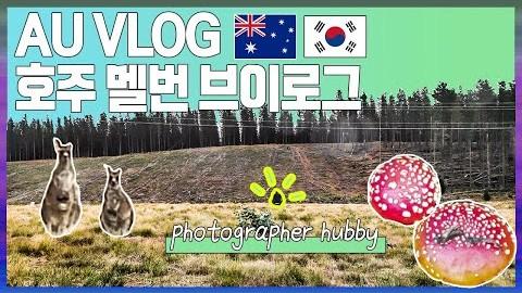 AU VLOG 호주 멜번 브이로그, 캥거루가 뛰어다니고 독버섯이 가득한 멜번 근교 드라이브, 나는야 취미 부자 남편 보조
