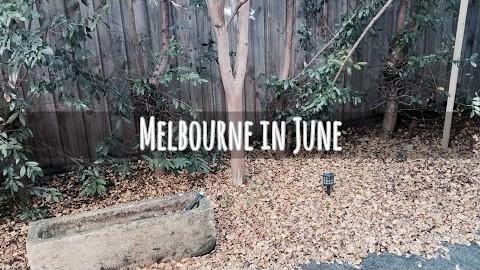 [VLOG:호주 멜버른일상 ????????집콕ㅣ만두해서 쟁여놓기ㅣ하루다감] #해외브이로그