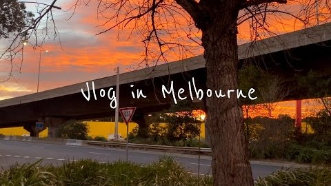 ???? 멜버른 브이로그|#Vlog.11 락다운 다이어리|#멜버른 락다운 일상, #생일 자의 하루, Black star pastry, #집밥 먹방|????호주 일상|Melbourne Vlog