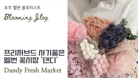 멜번 꽃시장 | 프리저브드 | 한국택배 | Flower Market | Preserved