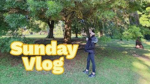 5월 멜번 브이로그 | Melbourne Vlog from May | Royal Botanic Gardens | Melbourne Lockdown | 멜번 락다운 | 호주 일상로그