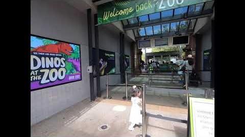 Melbourne ZOO before lockdown 락다운전 멜버른 동물원