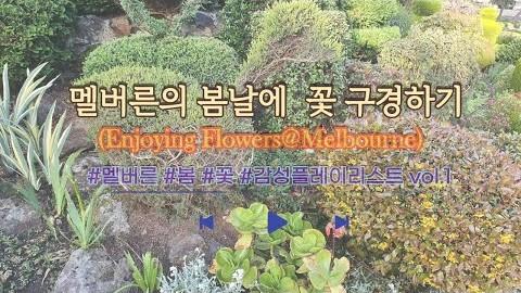 멜버른의 봄날에 ???? 꽃 구경하기 (Enjoying Flowers@Melbourne)